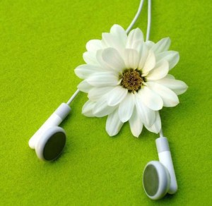 earbuds and a daisy